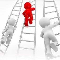 Сайт. Концепт. Идея. Распределение ролей в создании сайтов.